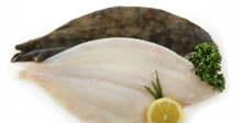 Fresh Fish, Buy Online, UK Delivery, Fresh Seafood